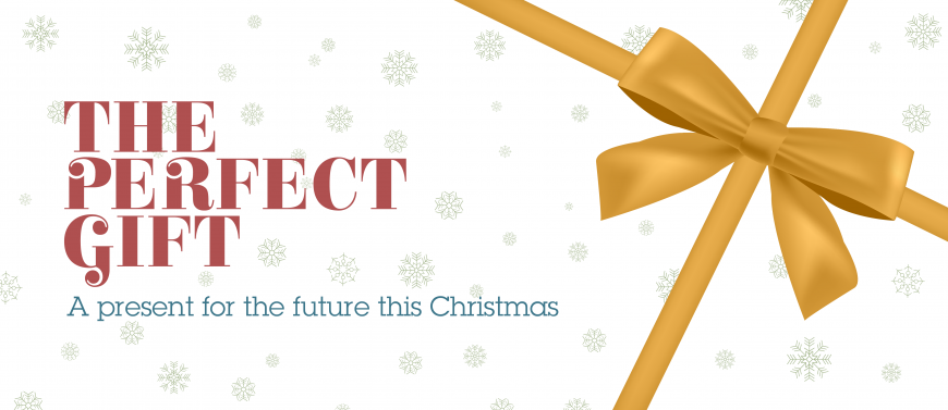 The Perfect Gift - A present for the future this Christmas