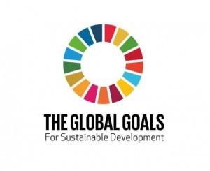 The Sustainable Development Goals | Children in Crossfire