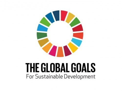 The Sustainable Development Goals | Children in Crossfire